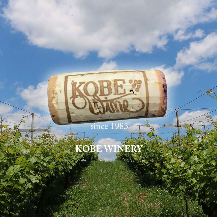 An Exquisite Marriage of Kobe Wine and Kobe Beef