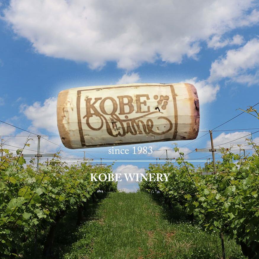 Un Exquisito Matrimonio de Vino Kobe y Carne de Res Kobe